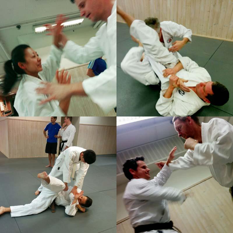 tatsu-karate-terminsstart-2016